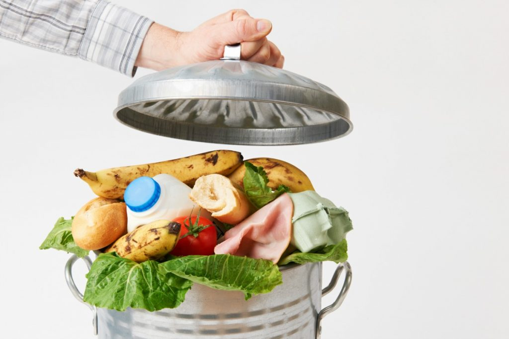Food Waste Awareness Festival in NYC