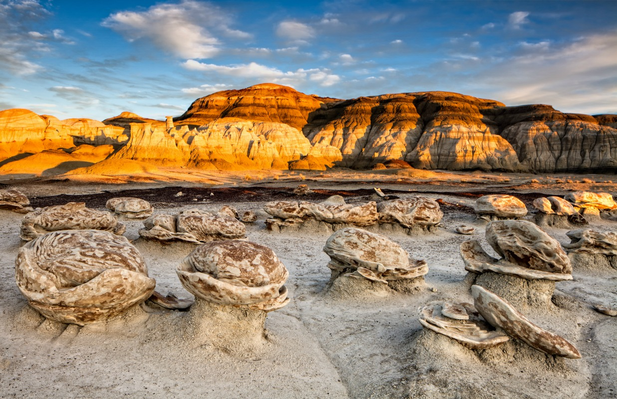 Top Reasons to Visit New Mexico