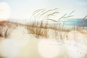 Bill Bailey Travel Reviews A Great Coastal Michigan Town